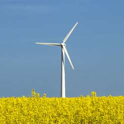 China - Over half billion dollars to invest in the Romanian Renewable Energy field